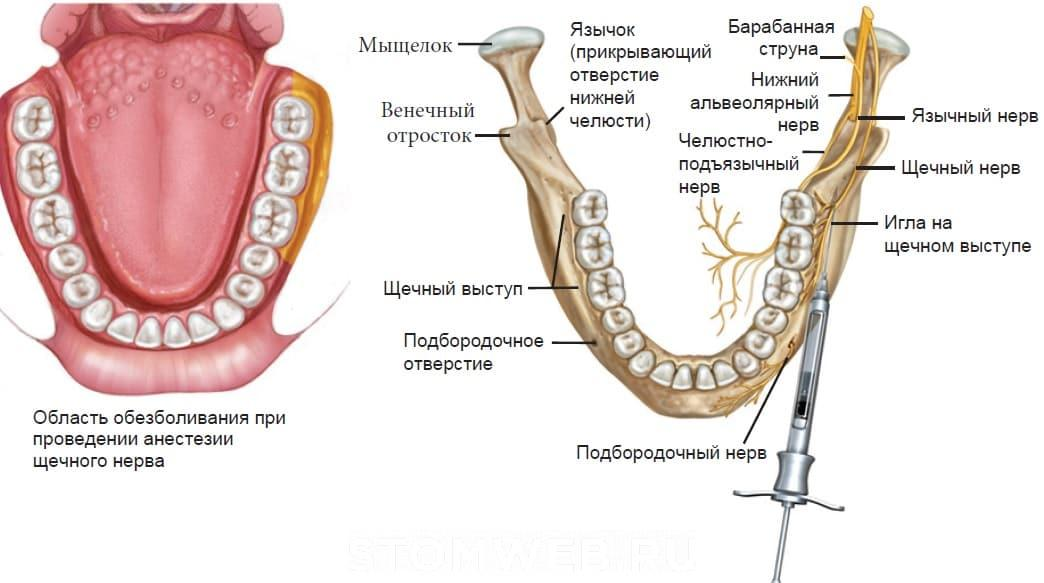Попали в сосуд при анестезии зуба 54